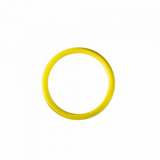 Airmar DST800 Yellow O Ring for valve