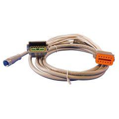 Maretron Adapter Micro Female to Deutsche 12 Pin 2 T Cable